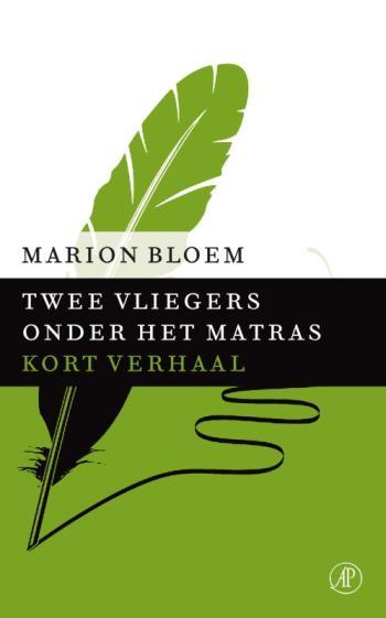 9789029590099 Twee vliegers onder het matras - Kort verhaal (e-boek)